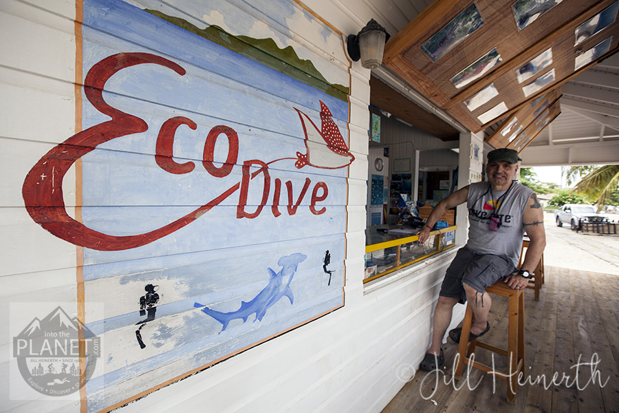 Eco Dive Shop